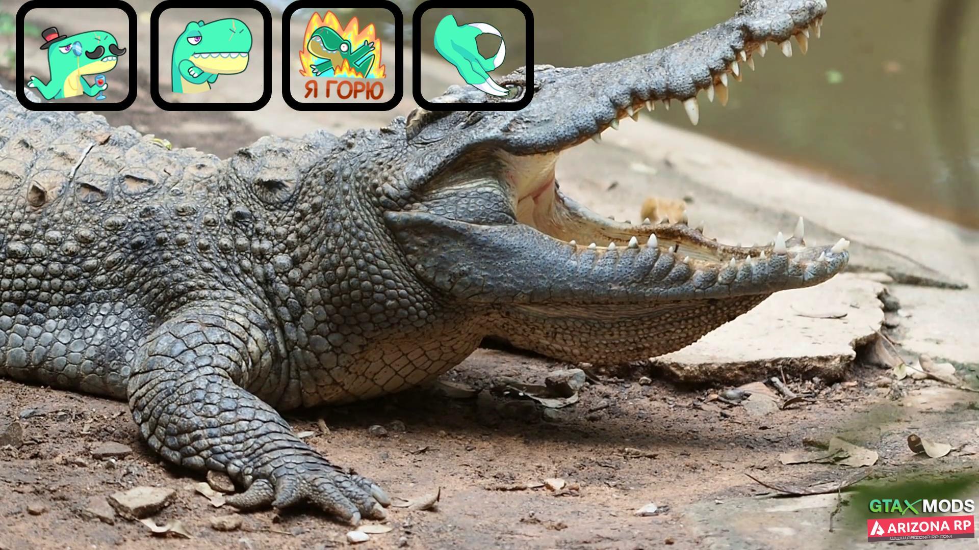 FistPack крокодил