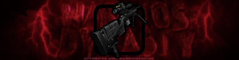 Sniper rifle from COD